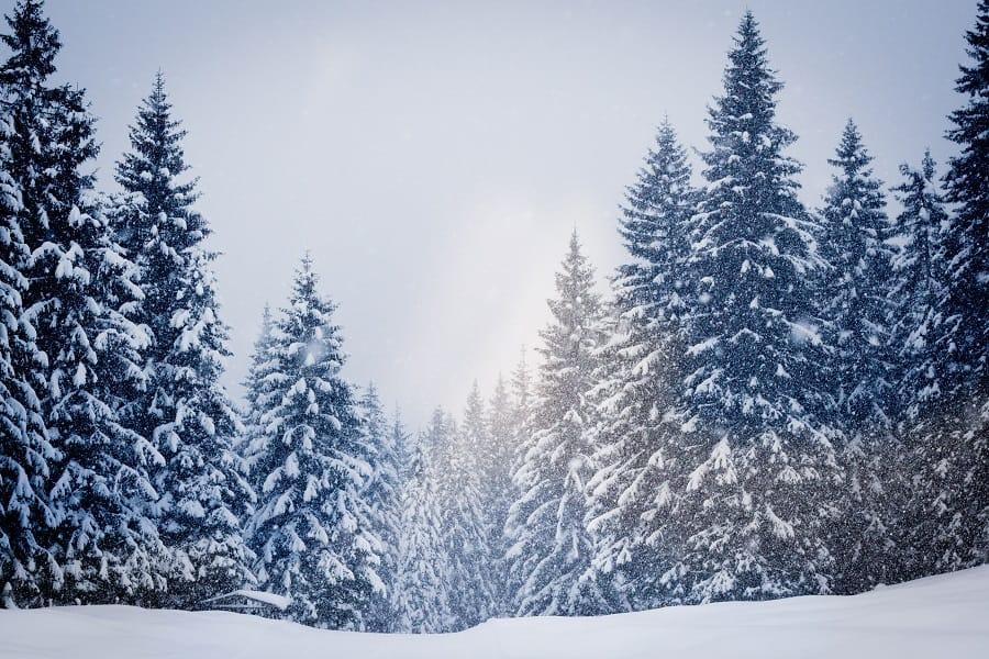 Winter in Linz Langlaufen und Skifahren