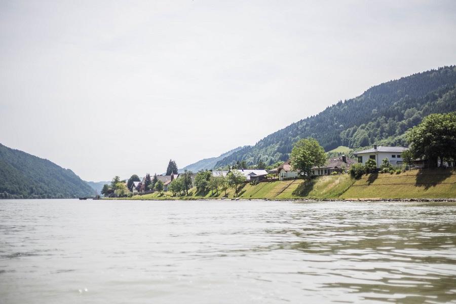 Sonniger Tag am Donauradweg