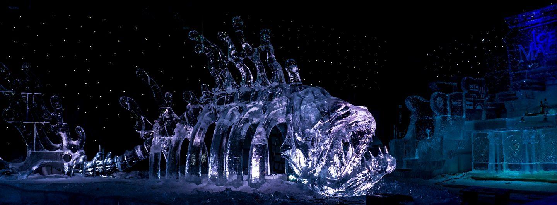 die kälteste ausstellung in linz ice magic fräulein flora linz