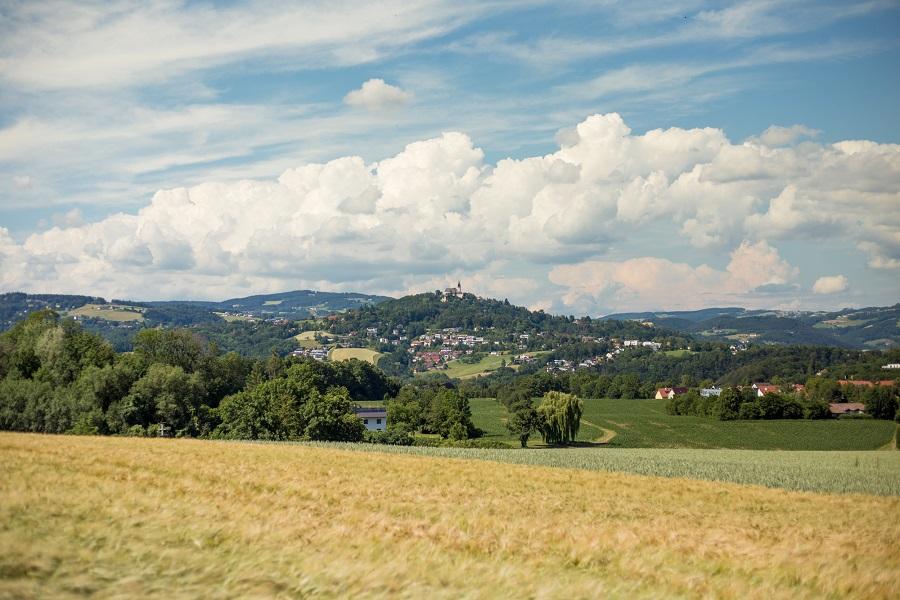 Beste Aussicht am Stadtwanderweg Linz