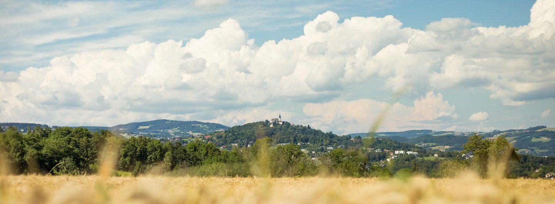 Stadtwanderweg Turm Aussicht Linz